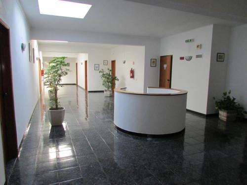 Apartment Camões