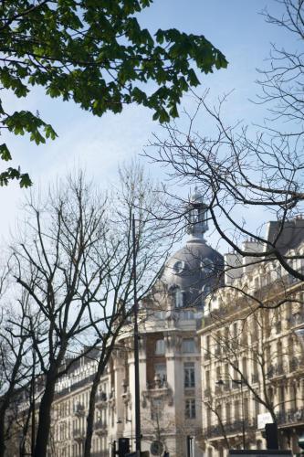 Marvellous Sunbathed 3BR at the heart of Paris photo 48
