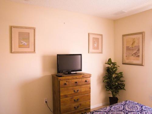 Terra Verde By Viva Homes International - Kissimmee, FL 34746