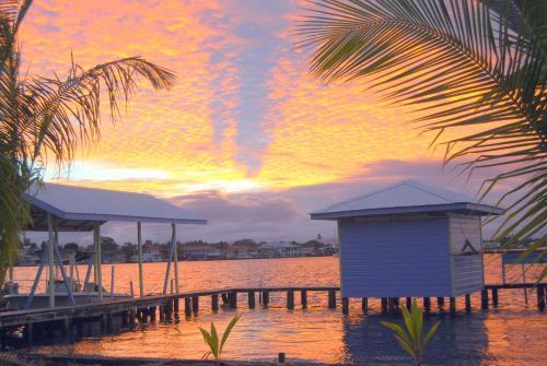 Cosmic Crab Resort at Careening Cay Photo
