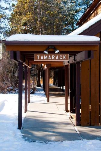 Tamarack Apartment Photo
