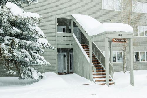 Balsam A3 Apartment Photo