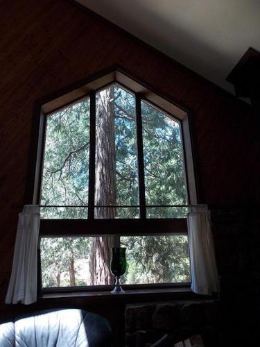 Hidden Oaks Photo