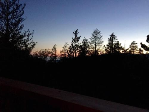 Scenic View Photo
