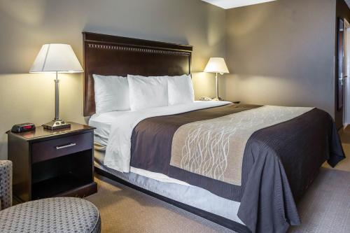 Comfort Inn & Suites Tinley Park Photo