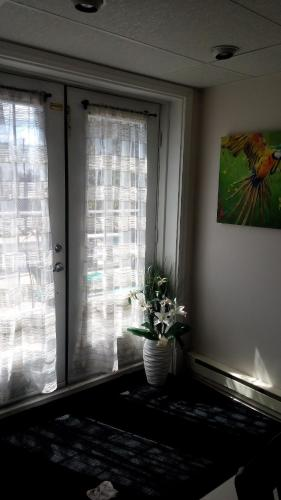 Appartement Bellevue Photo