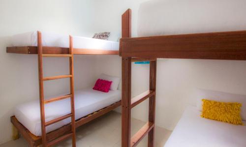 Beds Friends Hostel Photo