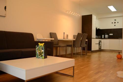 Apartment Medvedín 331/110