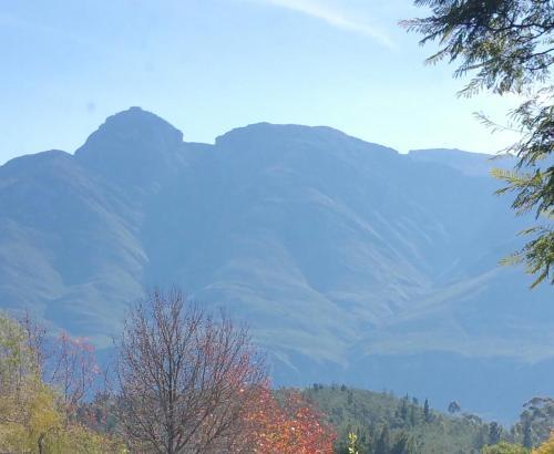 Bergview Photo