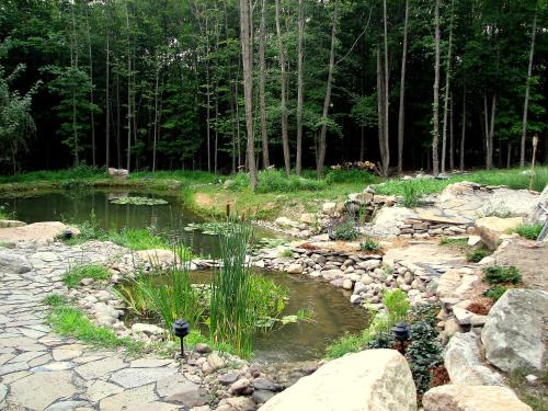 Tranquil Mountain Retreat in Gardiner Photo