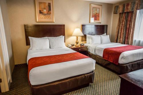 Comfort Suites Chicago - Oakbrook Terrace Photo