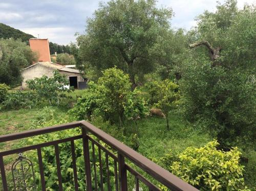 Galini Family House In Olive Garden