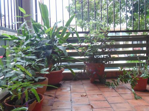 Apartamento Lo de Julia Photo