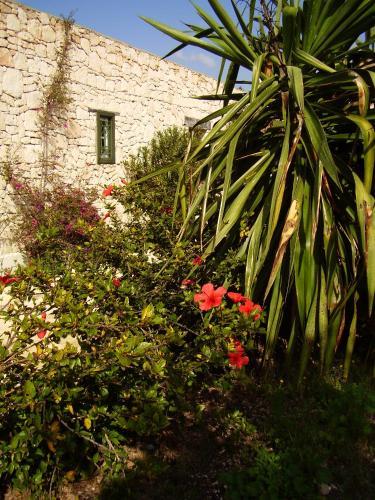 Les Jardins De Villa Maroc In Morocco