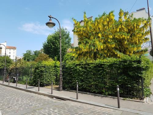 Moulin Vert photo 33