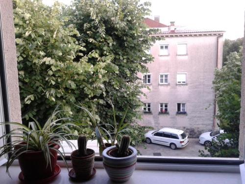 Apartment TD
