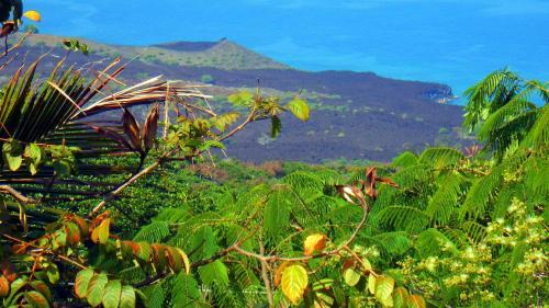 Kona Leilani Vacation Home - Captain Cook, HI 96704