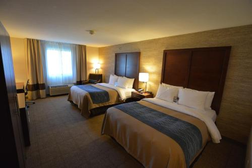 Comfort Inn Ludington Photo