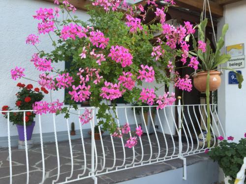 Haus bei der Linden Ferienwohnungen photo 35