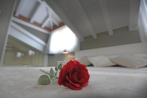 Suite con bañera de hidromasaje Hotel Spa San Marcos 4