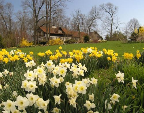 Swiss Woods Bed And Breakfast - Lititz, PA 17543