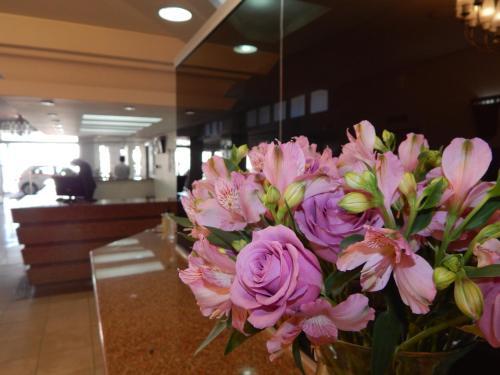Hotel Continental Santa Maria Photo