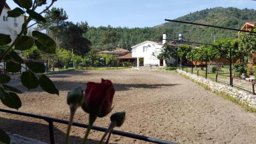 Oranj Ranch Hotel