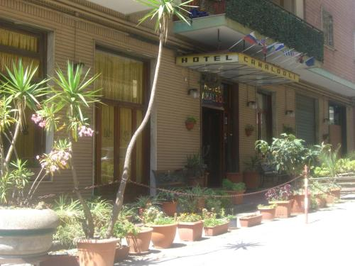 Hotel Camaldoli photo 4