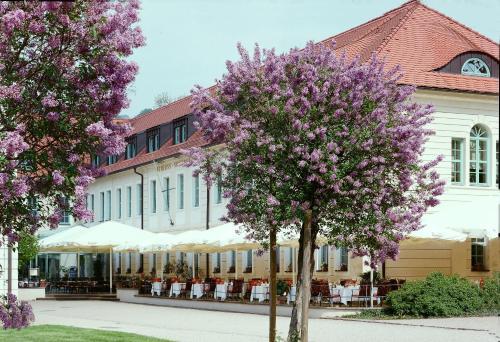 Bild des Schloss Hotel Dresden Pillnitz