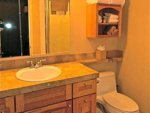 Viking Lodge 100a Apartment - Telluride, CO 81435