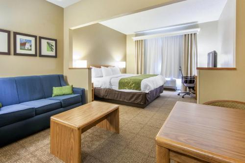 Comfort Suites Lexington Photo