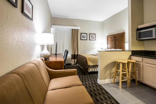 Comfort Inn & Suites Greenville Photo