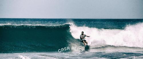 Casa Alice Surf Lodge Photo