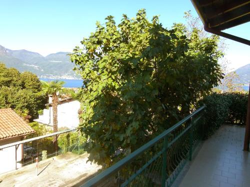 Locazione turistica Lucia