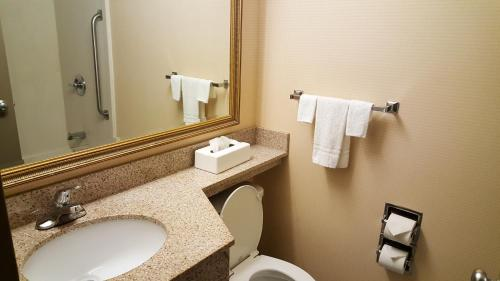 Quality Inn & Suites Charleston Photo
