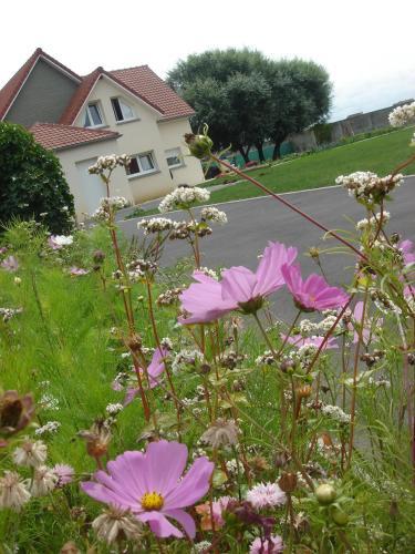 Chambres d 39 h tes la villa des hortensias berck sur mer prix photos et avis - Chambre d hote berck sur mer ...