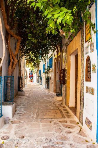 Dar Biba Photo