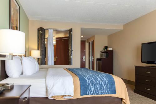 Comfort Inn Quantico Photo