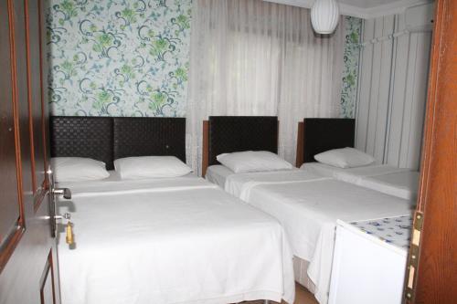 Gunter Seher Hotel, Amasra
