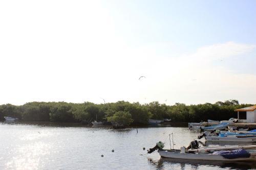 San Felipe Inn Yucatan photo 9