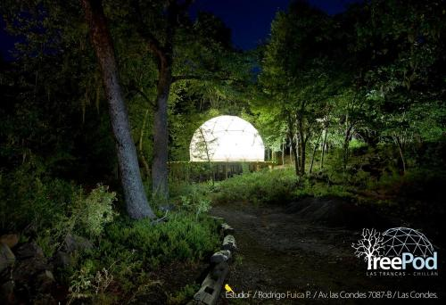 Domos Treepod Photo
