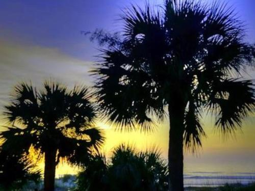 4 Ocean Club Villa Home - Hilton Head Island, SC 29928