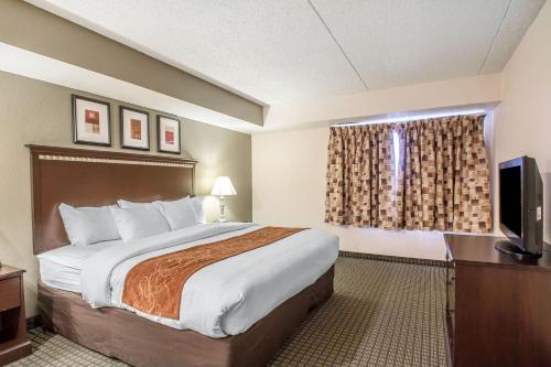 Comfort Inn & Suites Rochelle Photo