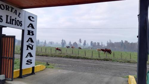 Cabañas Portal Los Lirios Photo