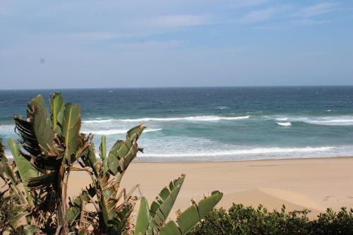 Mseni Beach Lodge Photo