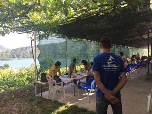 Hostel Ferry Berisha