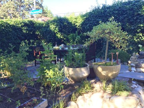 Savory Gardens - Victoria, BC V8R 1M3