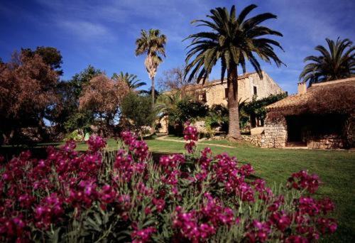 Cami de s´Avall s/n, Manacor, 07500, Majorca, Spain.