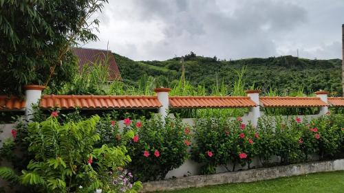 qq garden house - Qq Garden