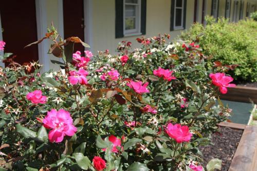 Lodge At Kennebunk - Kennebunk, ME 04043